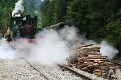 Train touristique-Le Conifer