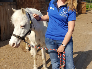 "RDA volunteer says: ""It's like a magic trick"""