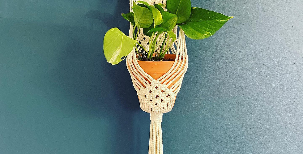 Wall Hanging Plant Holder