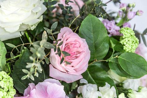 Amega Fleur WR_140.jpg