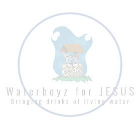 Waterboyz Logo (faded).jpg