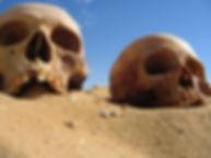 Egypt Skulls.jpeg
