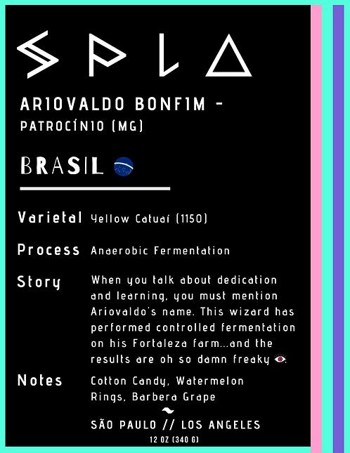 Ariovaldo Bonfim,  Anaerobic Fermentation, Patrocínio - Minas Gerais (W)
