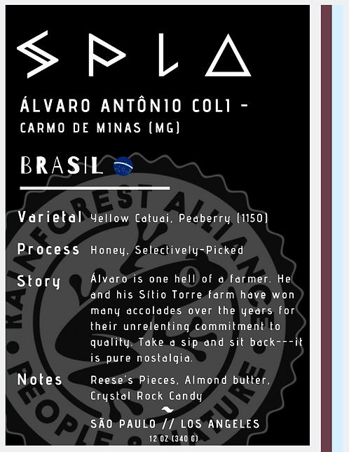 Álvaro Antônio Coli - Carmo de Minas, Minas Gerais