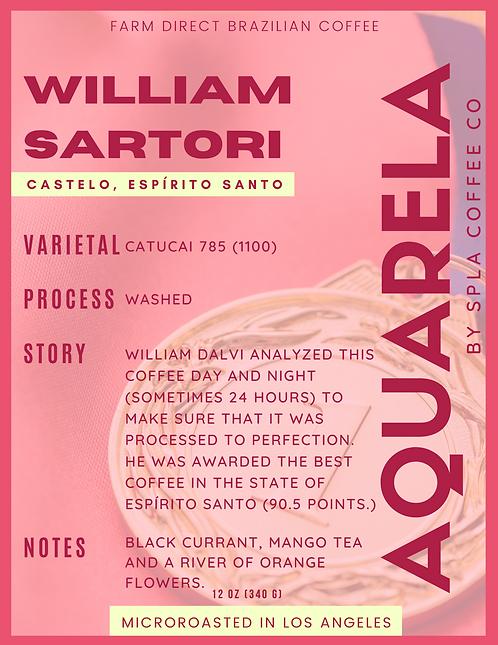 Willian Dalvi Sartori, Castelo - Espírito Santo (W)
