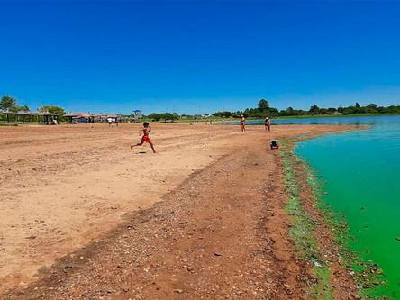 Federación: retratan el verdín que contamina la Playa Grande del Lago e impide su uso