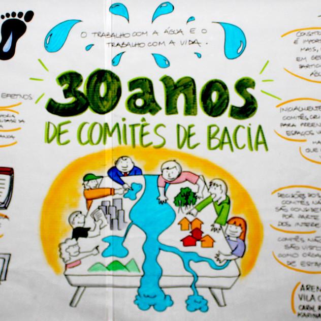30 ANOS DE COMITÊS DE BACIAS