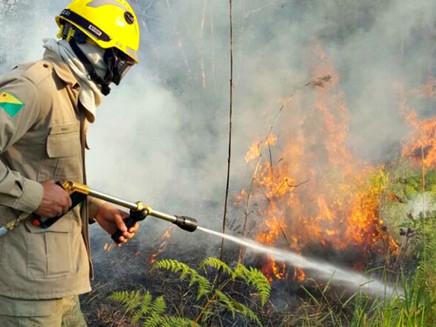Em 2 horas, incêndios devastam mais de um hectare no interior do AC