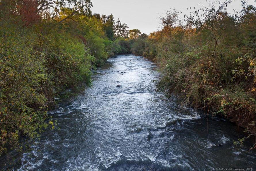 IAT promove encontro com usuários dos recursos hídricos da sub-bacia do Rio Azul  -  Curitiba, 13/09/2021  -  Foto: IAT