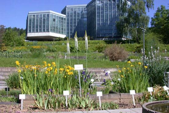 テュービンゲン大学植物園