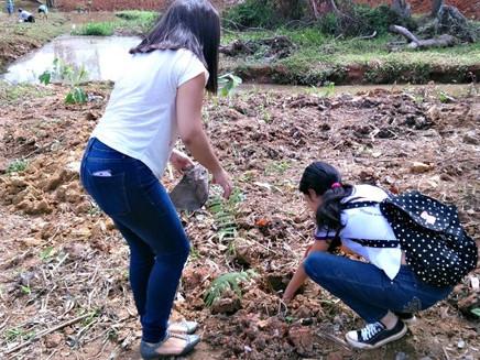 Voluntários plantam 600 mudas de plantas em margem de igarapé no AC