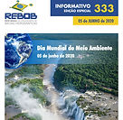 Informativo 333