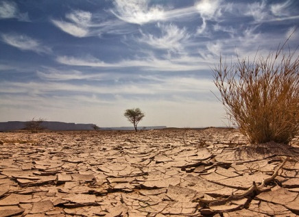5 recordes perturbadores que o Planeta quebrou em 2016