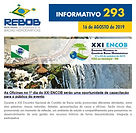 Informativo 294
