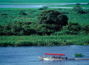 Sala de Crise do Pantanal inicia acompanhamento da seca na região