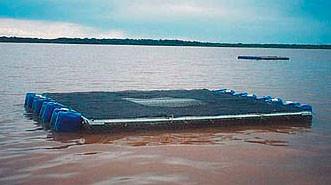 A Piscicultura em tanque-rede como Alternativa no Pantanal