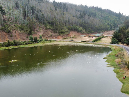 Seminario planteó alternativas para resolver la eutrofización en humedales