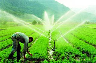 Brasil está entre os dez países com maior área irrigada