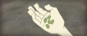 Os Espíritos da Floresta (animação)