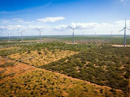 Energia eólica deve responder por 20% da eletricidade mundial até 2030