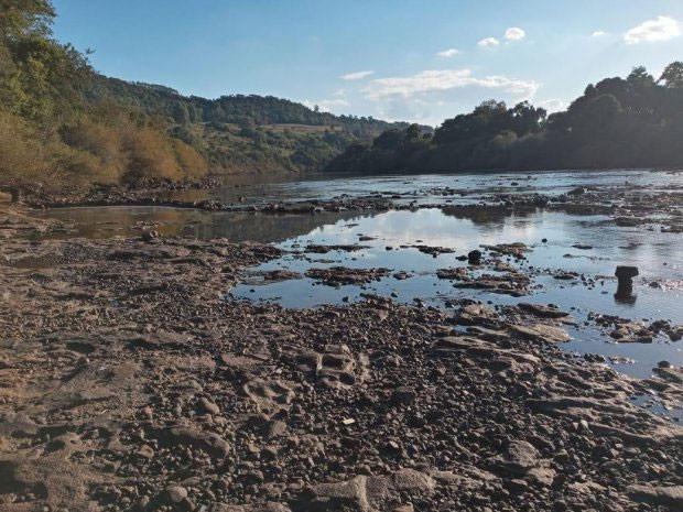 Foto: Divulgação/ Comitê de Bacia Hidrográfica de Chapecó