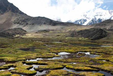 Aportes del 6.5.1 al Plan Nacional de Cuencas en Bolivia