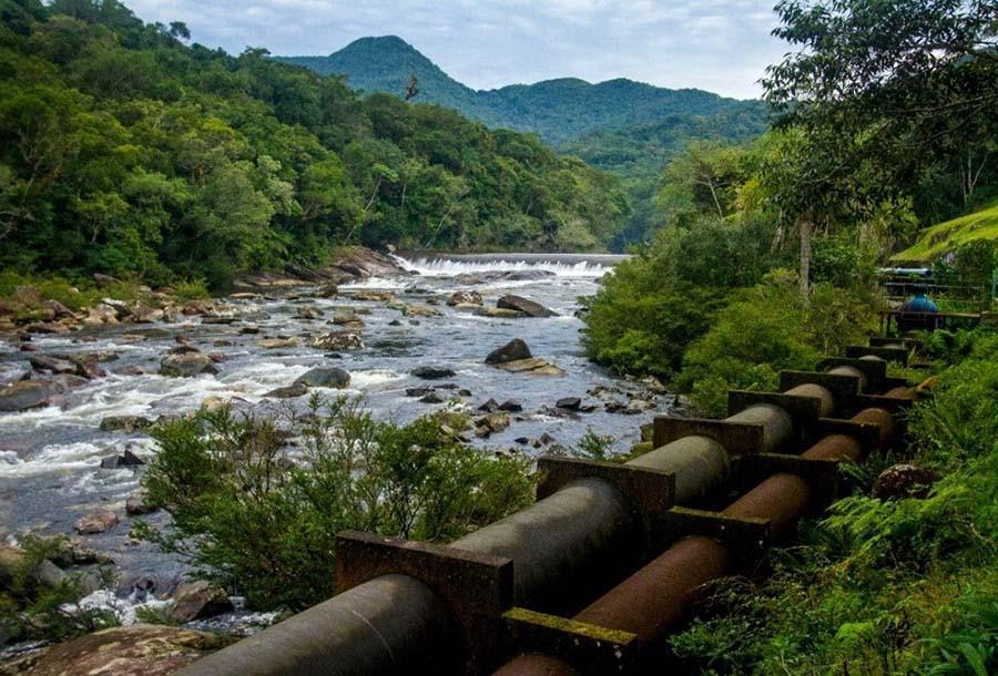 Os comitês de bacias agora terão subsídio oficial para ajudar a preservar os mananciais que abastecem Florianópolis e cidades da região.