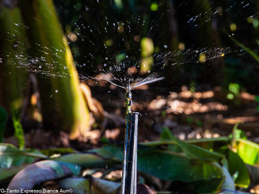 Minas Gerais consolida regras para cobrança pelo uso de recursos hídricos