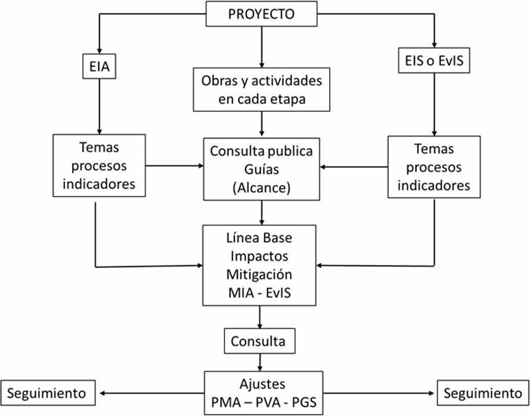 Figura 1. Procedimiento de EIA – EVIS integrado