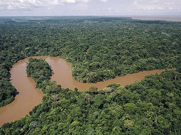 Seleção de consultor para o projeto Bacia Amazônica recebe currículos até 25 de agosto