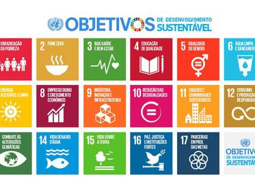 Seis transformações na direção da sustentabilidade, artigo de Maurício Antônio Lopes