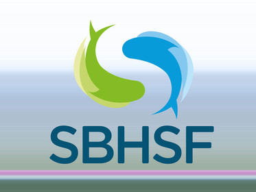IV SBHSF acontecerá em agosto de 2022 de forma híbrida