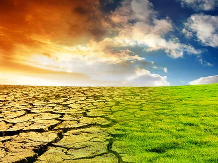 Mudanças climáticas exigem adaptações, mas ainda não são prioridade