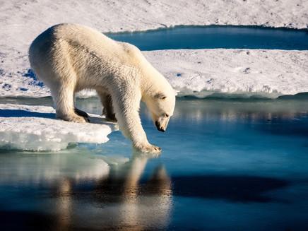 Fenômenos climáticos extremos prosseguirão em 2017, diz ONU