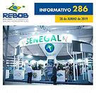 Informativo 286