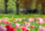 四季折々の自然の美しさが感じられる場所だ。(C)Baden-Baden Kur & Tourismus GmbH
