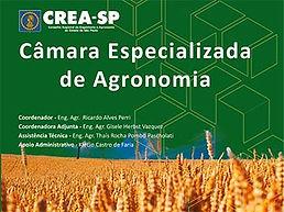 PAINEL A atuação do profissional de Meteorologia e parâmetros de fiscalização  Ricardo Hallak - CREA-SP