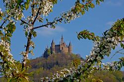 四季折々の姿を見せるホーエンツォレルン城