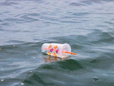 Há 14 milhões de toneladas de plástico no fundo dos oceanos, estima estudo