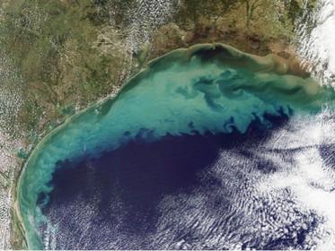 Zonas mortas nos oceanos já são do tamanho de SP