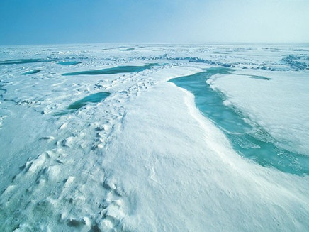 Ártico registra calor recorde e retrocesso em bancos de gelo.