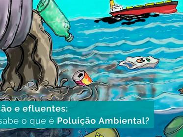 Poluentes e efluentes: você sabe o que é Poluição Ambiental?