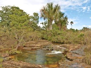 R$ 5,3 milhões para melhorar oferta de água no cerrado