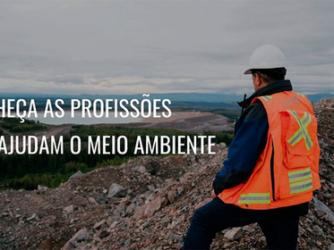 Conheça as profissões que ajudam o meio ambiente