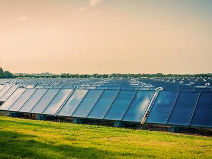 Entendendo o impacto ambiental causado por painéis solares