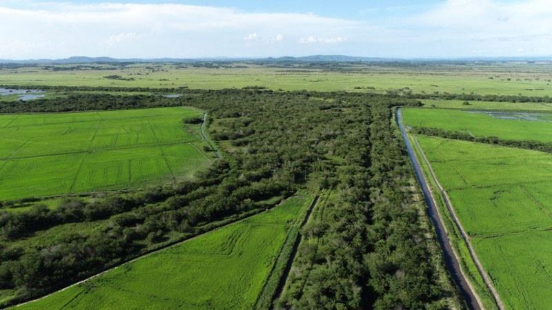 Visão aérea da Bacia do Rio Gravataí - Foto: Acervo DIOUT/DRHS