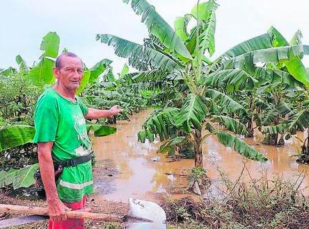 Cultivos y calles inundadas en Tumbes