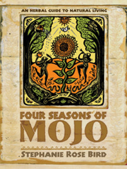Four Seasons of Mojo
