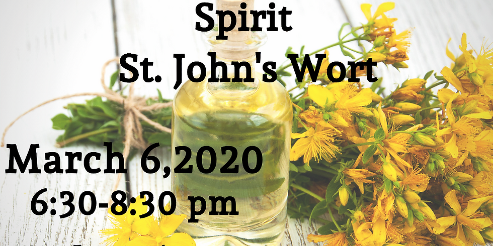 Plant Consciousness Series 2: Journey with the Spirit of St. John's Wort