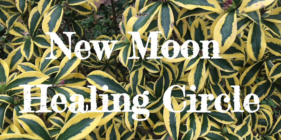 Libra New Moon Healing Circle with Autumn Austin